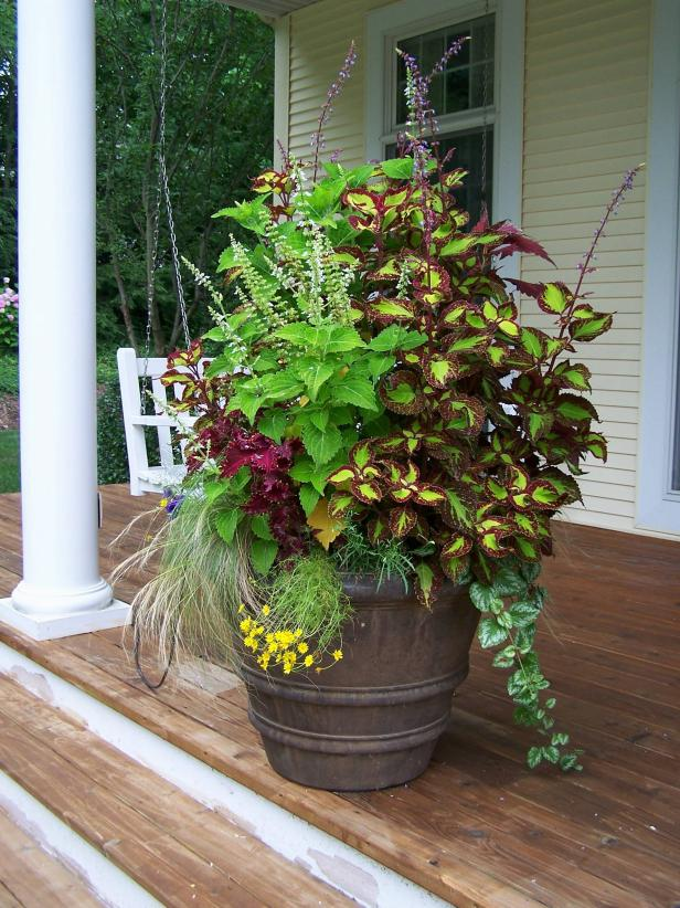 10 Container Gardening Ideas | Free Spirit Patio Planter